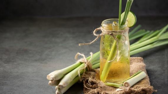 Nine reasons to love lemongrass
